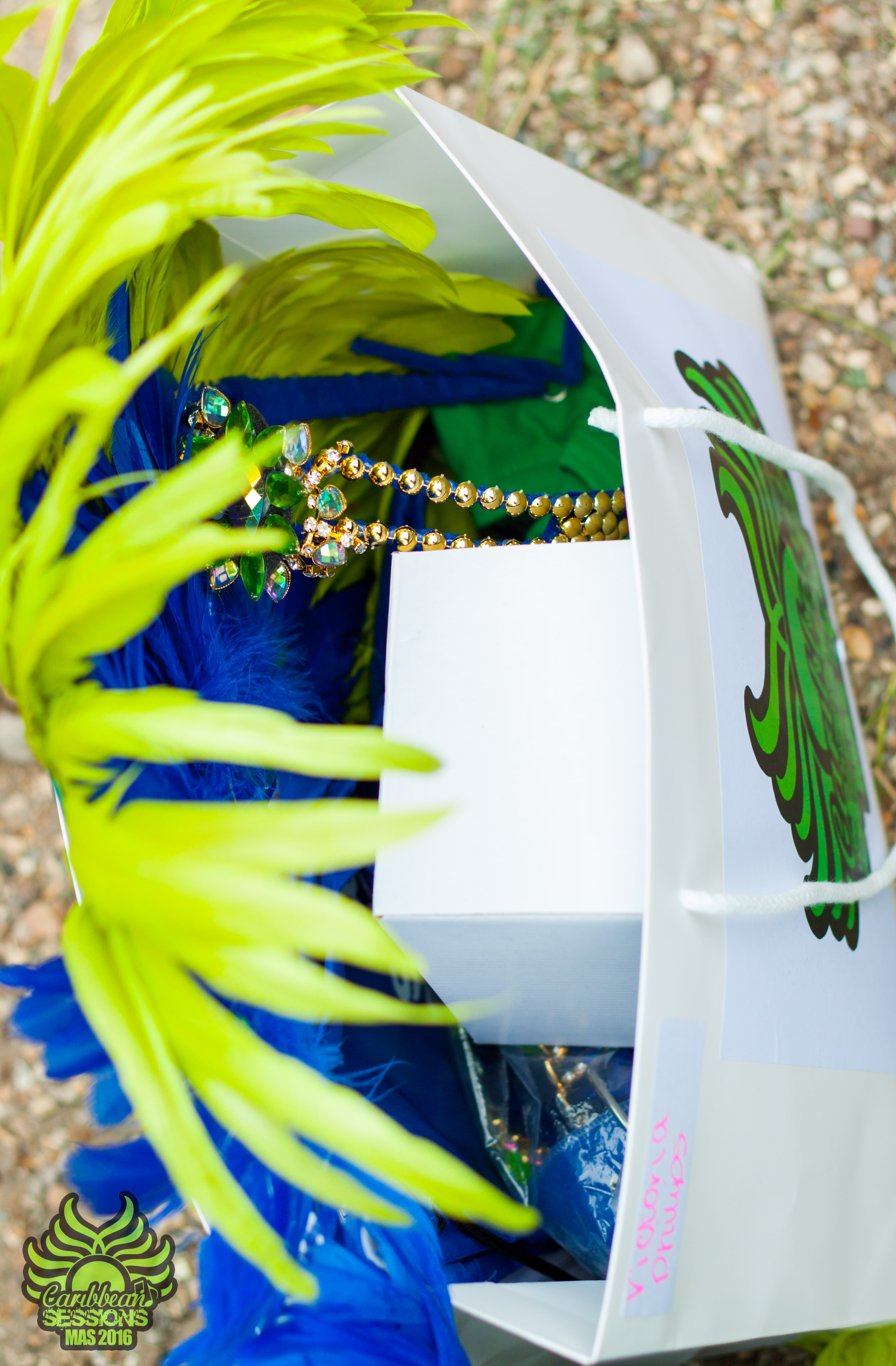 Caribbean Sessions Costume Collection-115