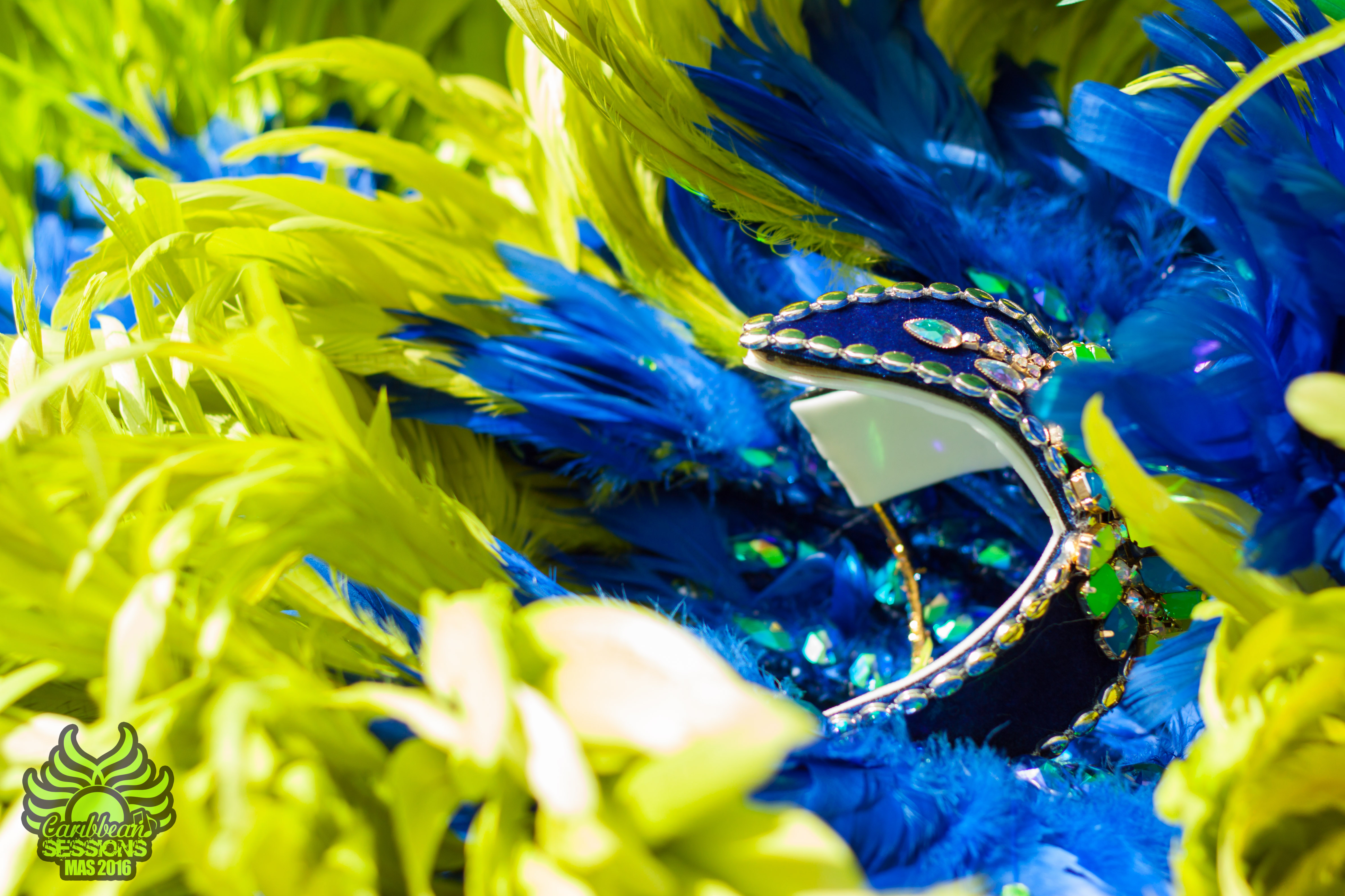 Caribbean Sessions Costume Collection