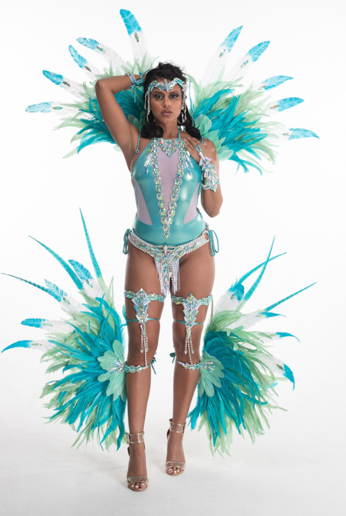 Caribbean Sessions Light Premium Swimwear With Tiara And Collar 2020